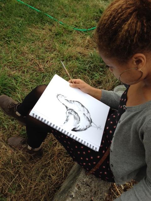Hampshire Farm chicken drawing