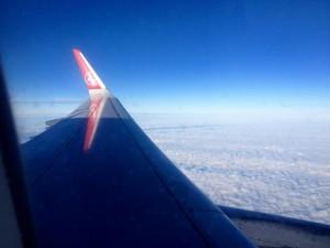 Turkish flight into New Deli